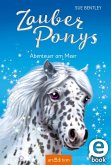 Abenteuer am Meer / Zauberponys Bd.5 (eBook, ePUB)