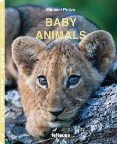 Baby Animals - Poliza, Michael