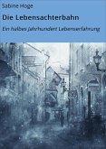 Die Lebensachterbahn (eBook, ePUB)