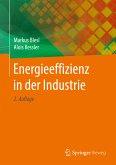 Energieeffizienz in der Industrie (eBook, PDF)