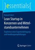 Lean Startup in Konzernen und Mittelstandsunternehmen (eBook, PDF)