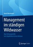 Management im ständigen Wildwasser (eBook, PDF)