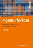 Ingenieurholzbau (eBook, PDF)