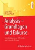 Analysis - Grundlagen und Exkurse (eBook, PDF)