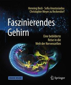 Faszinierendes Gehirn (eBook, PDF) - Beck, Henning; Anastasiadou, Sofia; Meyer Zu Reckendorf, Christopher