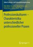 Professionskulturen – Charakteristika unterschiedlicher professioneller Praxen (eBook, PDF)
