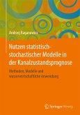 Nutzen statistisch-stochastischer Modelle in der Kanalzustandsprognose (eBook, PDF)