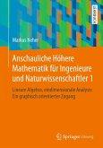 Anschauliche Höhere Mathematik für Ingenieure und Naturwissenschaftler 1 (eBook, PDF)