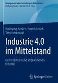 Industrie 4.0 im Mittelstand (eBook, PDF)