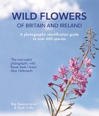 Wild Flowers of Britain and Ireland (eBook, ePUB)