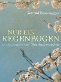 Nur ein Regenbogen - Erzählungen aus fünf Jahreszeiten (eBook, ePUB)