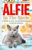 Alfie In The Snow