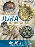 """Fossilien Sonderheft 2018 """"Jura-Ammoniten"""""""