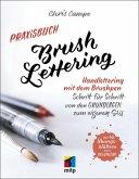 Praxisbuch Brush Lettering (eBook, PDF)