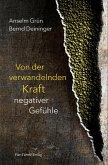 Von der verwandelnden Kraft negativer Gefühle (eBook, ePUB)