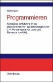 Programmieren (eBook, PDF)
