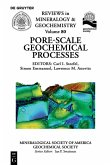Pore Scale Geochemical Processes (eBook, PDF)