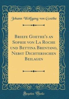 Briefe Goethe's an Sophie Von La Roche Und Bettina Brentano, Nebst Dichterischen Beilagen (Classic Reprint)