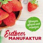 Erdbeer-Manufaktur (eBook, ePUB)