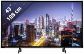Panasonic TX-43FXW654 Glossy Black with Silver Line 108 cm (43 Zoll) Fernseher (4K / Ultra HD)