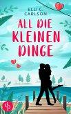 All die kleinen Dinge (Liebe, Chick Lit) (eBook, ePUB)