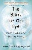 The Blink of an Eye (eBook, ePUB)