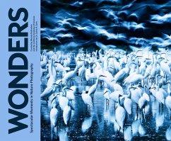 Wonders (eBook, ePUB) - Rubinstein, Rhonda