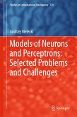 Models of Neurons and Perceptrons: Selected Problems and Challenges (eBook, PDF)