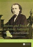 Brahms and Bruckner as Artistic Antipodes (eBook, PDF)