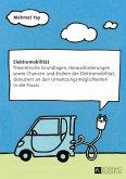 Elektromobilitaet (eBook, ePUB)
