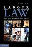 Labour Law (eBook, ePUB)