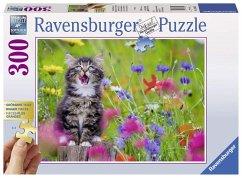 Katze im Blumenmeer Gold Edition