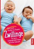 Zwillinge (eBook, ePUB)