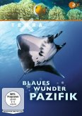 Terra X: Blaues Wunder Pazifik