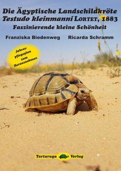 Die Ägyptische Landschildkröte Testudo kleinmanni LORTET, 1883 - Biedenweg, Franziska; Schramm, Ricarda