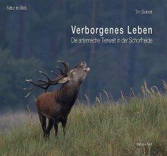 Verborgenes Leben - Steinert, Tim