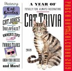 2019 a Year of Cat Trivia Colour Page-A-Day Calendar