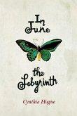 In June the Labyrinth (eBook, ePUB)