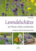 Lavendelschätze (eBook, PDF)