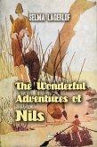 The Wonderful Adventures of Nils (eBook, ePUB)