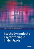 Psychodynamische Psychotherapie in der Praxis (eBook, PDF)