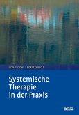 Systemische Therapie in der Praxis (eBook, PDF)