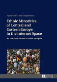 Ethnic Minorities of Central and Eastern Europe in the Internet Space (eBook, ePUB)