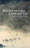 Brücken zwischen Leben und Tod (eBook, ePUB)