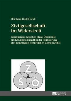 Zivilgesellschaft im Widerstreit (eBook, ePUB) - Hildebrandt, Reinhard