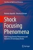 Shock Focusing Phenomena (eBook, PDF)