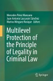 Multilevel Protection of the Principle of Legality in Criminal Law (eBook, PDF)