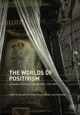 The Worlds of Positivism (eBook, PDF)