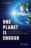 One Planet Is Enough (eBook, PDF)