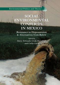 Social Environmental Conflicts in Mexico (eBook, PDF)